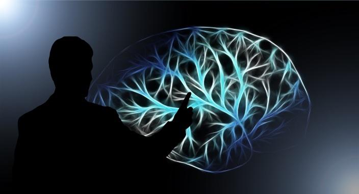 brain-3141247